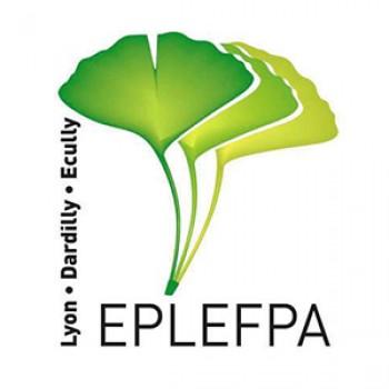 Eplefpa